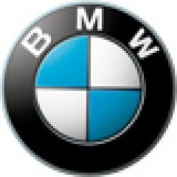 Оригинальное масло BMW